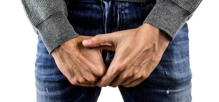 agrandir son penis
